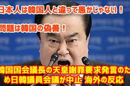 日本人は韓国人と違って愚かじゃない!問題は韓国の偽善!韓国国会議長の天皇謝罪要求発言のため日韓議員会議が中止 海外の反応