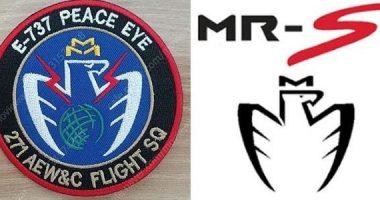 韓国空軍の部隊ロゴがトヨタ自動車のロゴに瓜二つだと判明して変更する羽目になってしまった模様 11